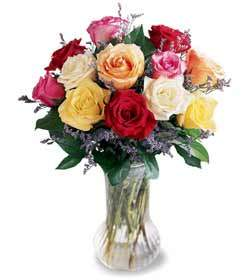Bouquet of roses  Rainbow