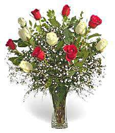Bouquet of roses (11 roses) Ardent