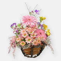 Flowers basket Soul Flight